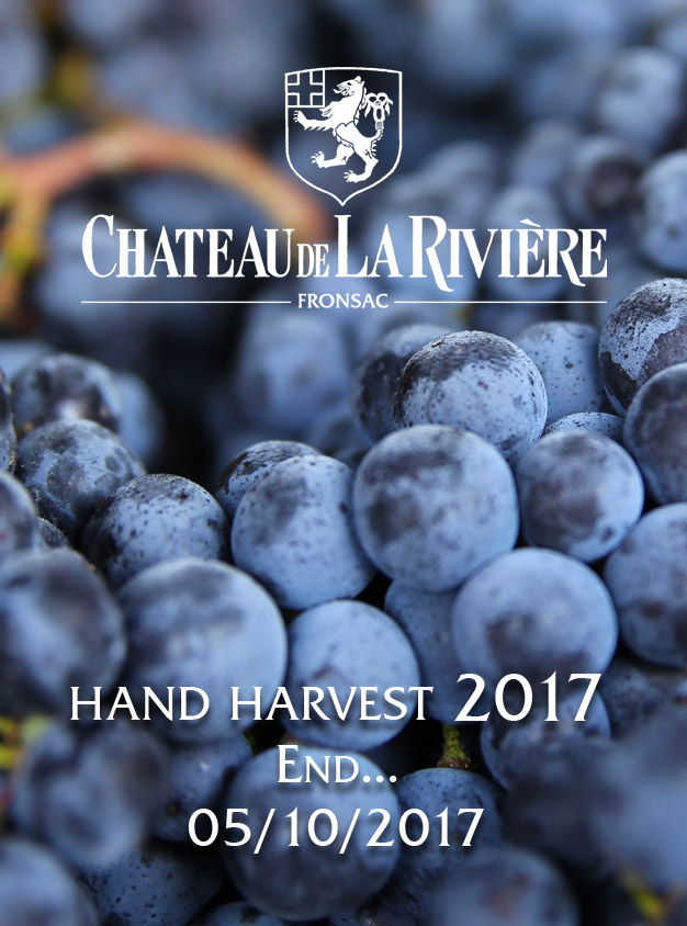 End of Hand Harvest 2017