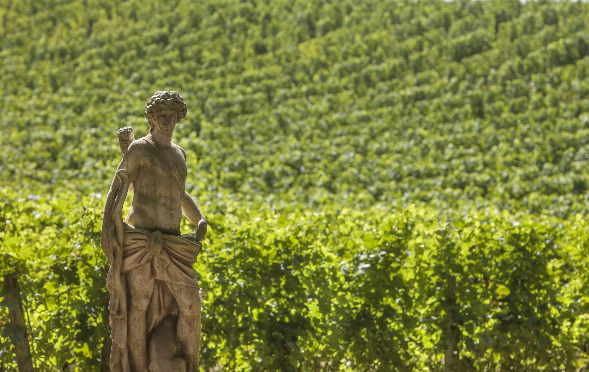 FRONSAC The French Toscana