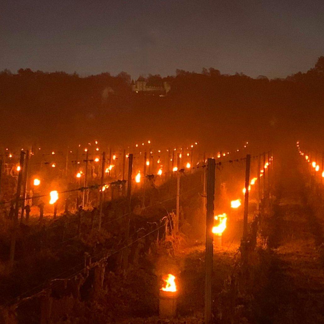 <center>2 nuits de Gel<br> (7 et 8 Avril)<br>Sauver nos Sauvignons</center>